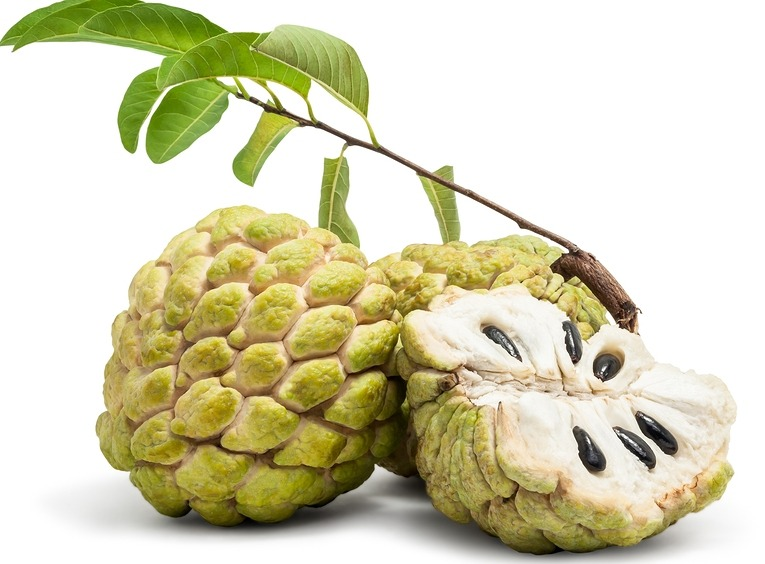 Custard Apple Sweetsop afw