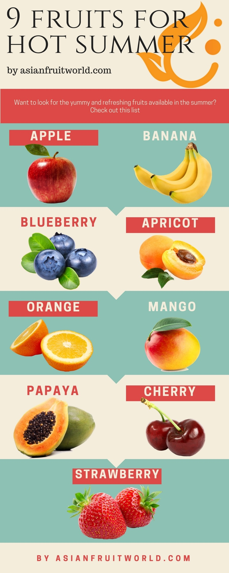 9 summer fruits infographics