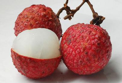 lychee fruit fact