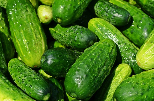 7 fruits that detox our body cucumber 2