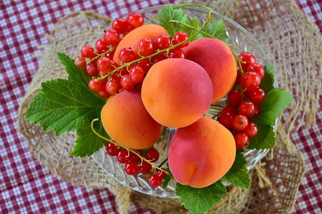 9 summer fruits apricot